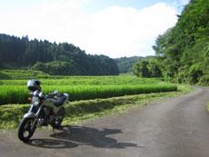 Bike1_1